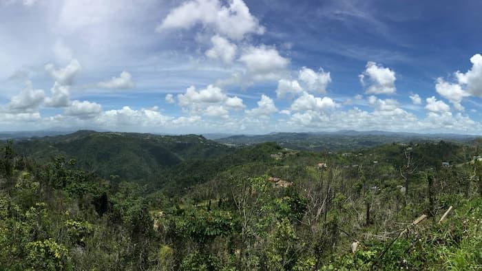 Foto por Daniel Alarcón.